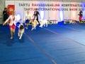 2013-11-03-tartu_int-_dsc8440