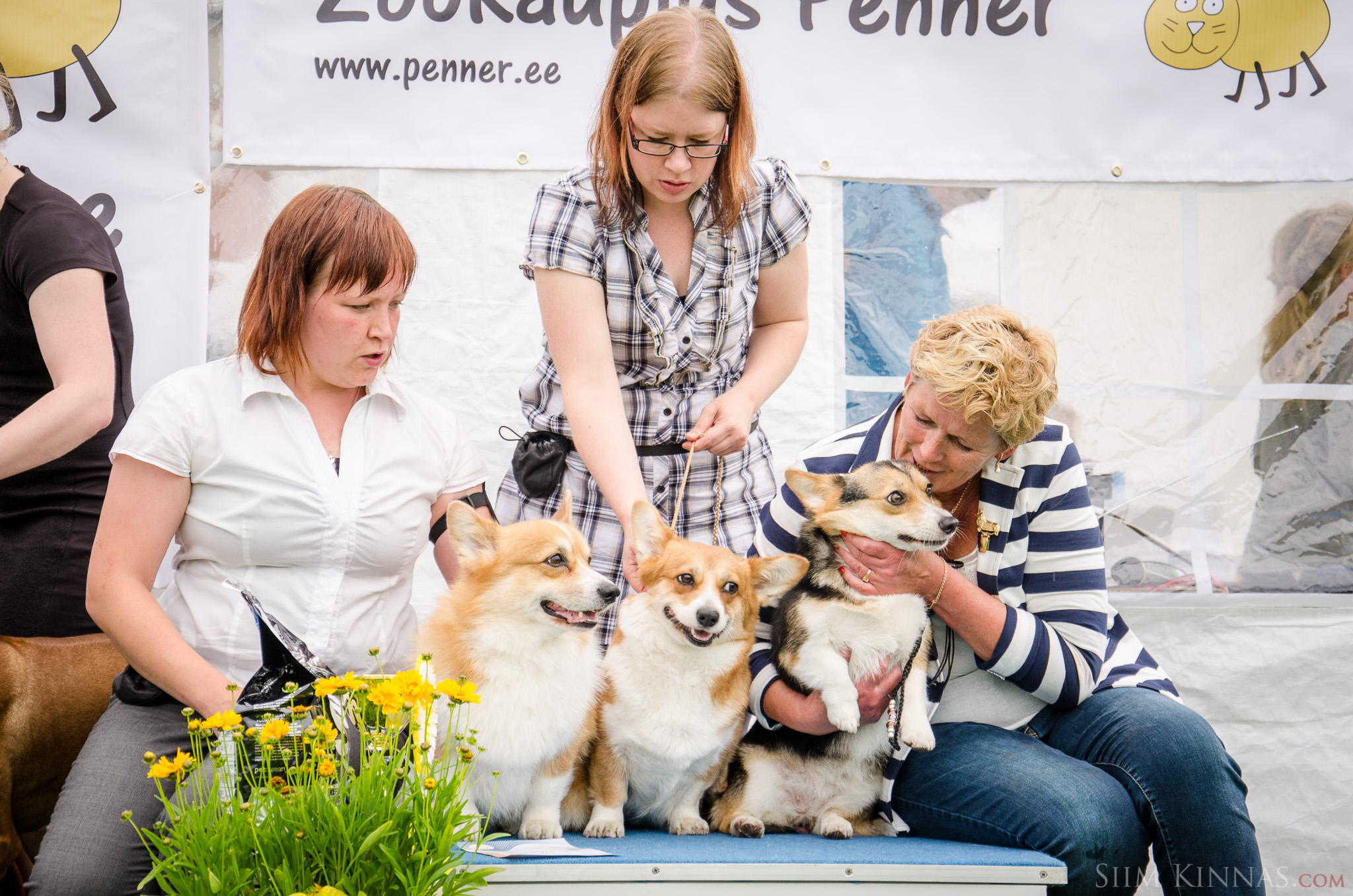 Best Breeder competition